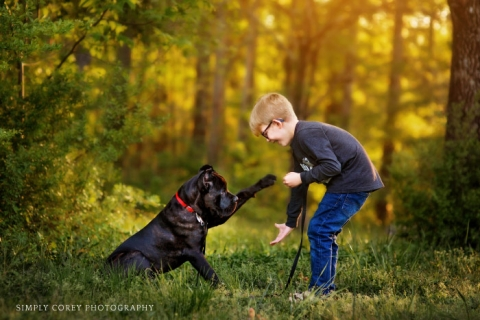 boy with Mastiff puppy by Atlanta children's photographer